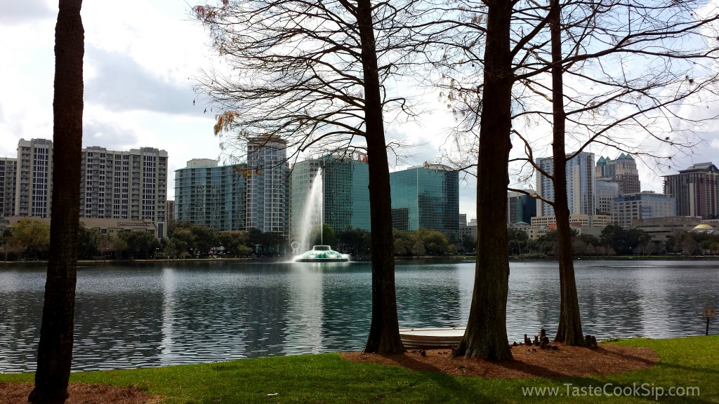 Sunny and beautiful at the Downtown Food & Wine Fest, in the heart of downtown Orlando.